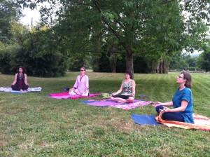 Zen dans l'herbe