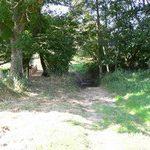 Randonnées d'été - Mercredi 2 Août -19h00- Bois du Tranblay